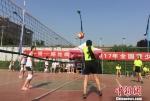 图为气排球比赛。 刘玉桃 摄 - 甘肃新闻