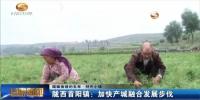 (砥砺奋进的五年·特色小镇)陇西首阳镇:加快产城融合发展步伐 - 甘肃省广播电影电视