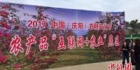 图为农产品+互联网展区。 侯志雄 摄 - 甘肃新闻