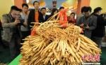 资料图:图为甘肃举办中药材产业大会。 杨艳敏 摄 - 甘肃新闻