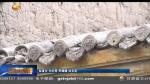 临夏:棚户区改造助力百姓安居梦 - 甘肃省广播电影电视