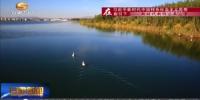 张掖:戈壁绿洲上的湿地水乡 - 甘肃省广播电影电视