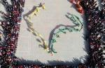 """【飞阅甘肃】张掖临泽:龙腾狮舞 万人祈福""""龙抬头"""" - 中国甘肃网"""