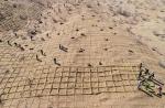 【飞阅甘肃】张掖临泽:植树固沙 绿洲逼退荒漠11公里 - 中国甘肃网
