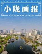 小陇画报|水乡泽国雁栖梦 南湖繁花又一春(79期) - 中国甘肃网