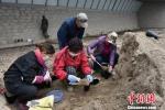 图为常乐村周边村民种植万寿菊。 魏金龙 摄 - 甘肃新闻
