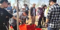 图为大学生志愿者开展义务植树。 杨娜 摄 - 甘肃新闻