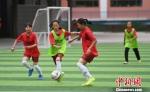 图为女子组运动员在绿茵场上。 杨艳敏 摄 - 甘肃新闻