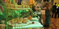 图为此次活动中以马铃薯为原材料烹饪制作的马铃薯系列佳肴展示。 张婧 摄 - 甘肃新闻