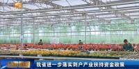 甘肃省进一步落实到户产业扶持资金政策 - 甘肃省广播电影电视