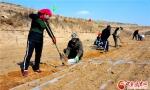 陇西县多措并举推进2万亩中药材绿色标准化药源基地建设(图) - 中国甘肃网