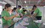 豫东南崛起轻工产业带 - 中国甘肃网