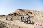 图为骑手在张掖红寺湖丹霞地貌赛段比拼。 杨艳敏 摄 - 甘肃新闻