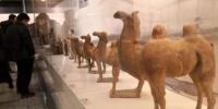 2019年1月23日,中国26家文博单位在甘肃省博物馆展出300件(套)精选文物,重现了古丝绸之路上由道路、绿洲和商业城邦组成的交通网络。(资料图) 丁思 摄 - 甘肃新闻